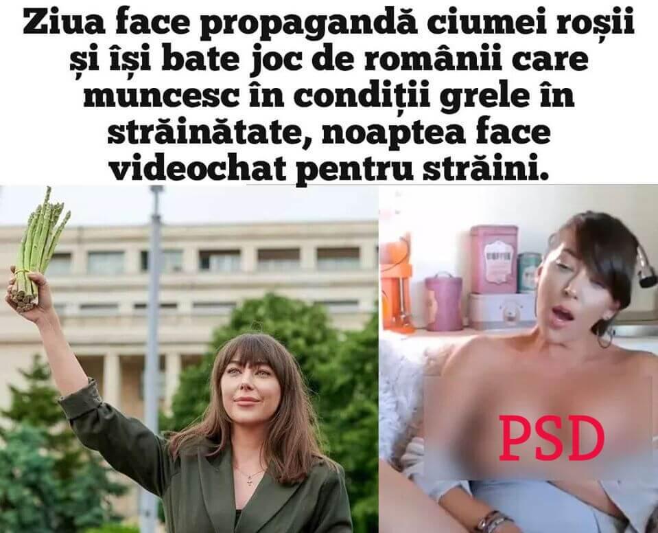 Activista PSD