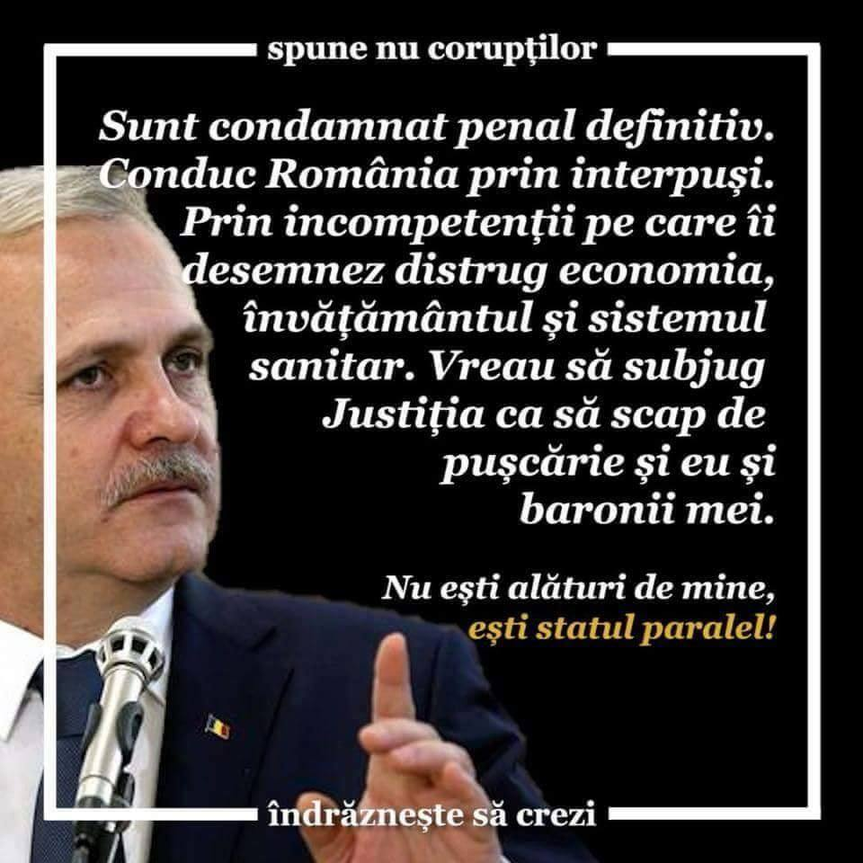 Borfasul Liviu Dragnea (PSD)