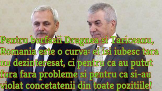 Dragnea, Tariceanu