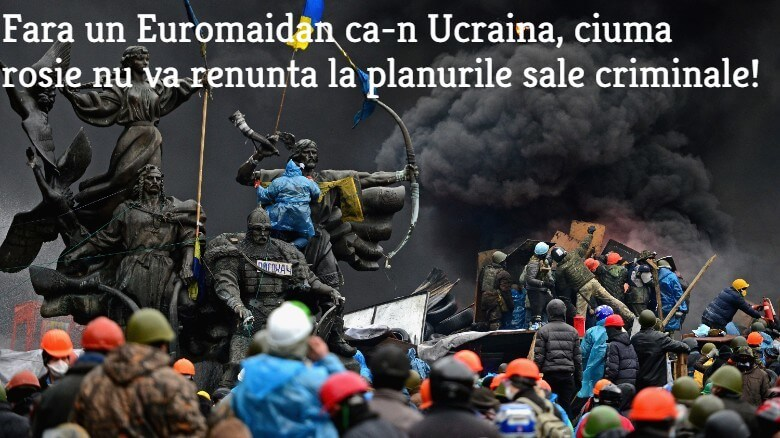 Euromaidan, Ucraina