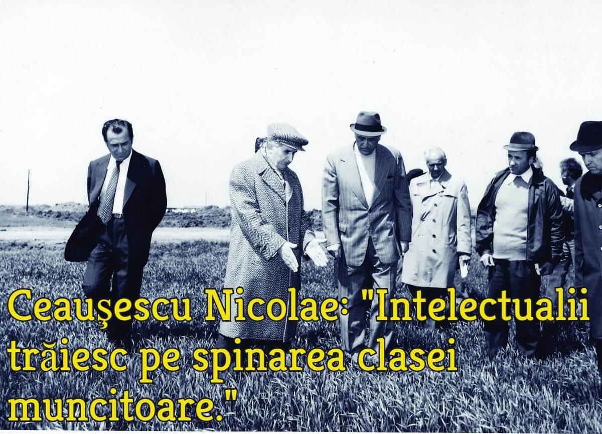 Ion Iliescu (stânga) şi Nicolae Ceauşescu