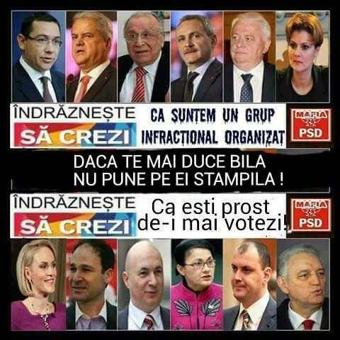 PSD = ciuma roşie = mafia