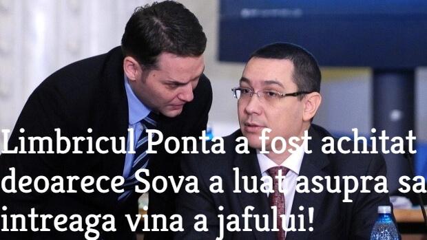 Sova, Ponta