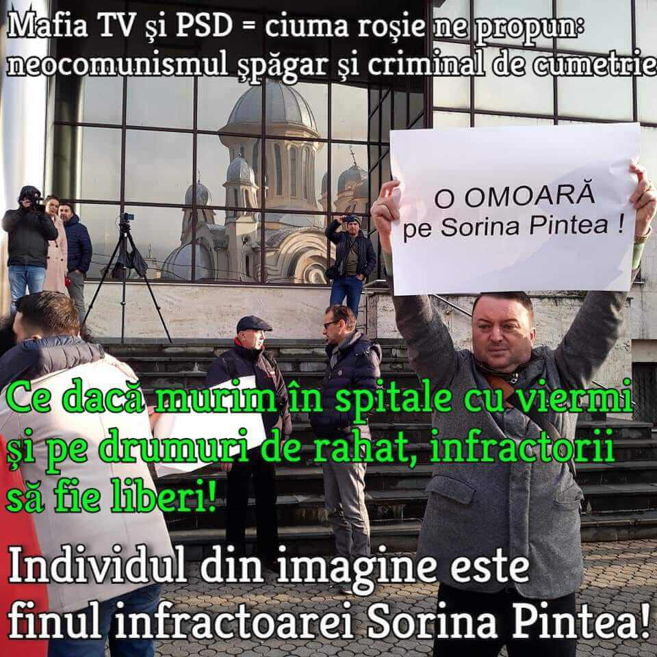 Sorina Pintea, PSD