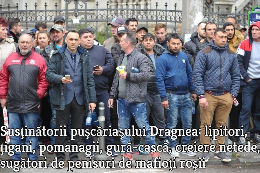 Sustinatorii mafiotului Liviu Dragnea