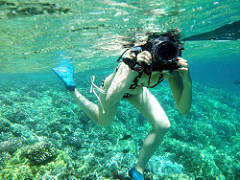 Husa submersibila
