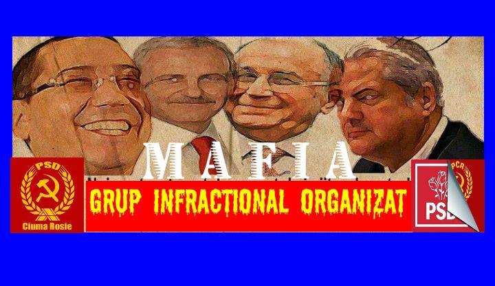 PSD = grup infractional organizat