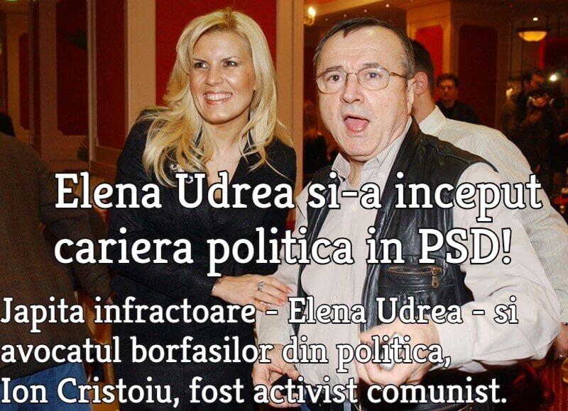 Elena Udrea, Ion Cristoiu