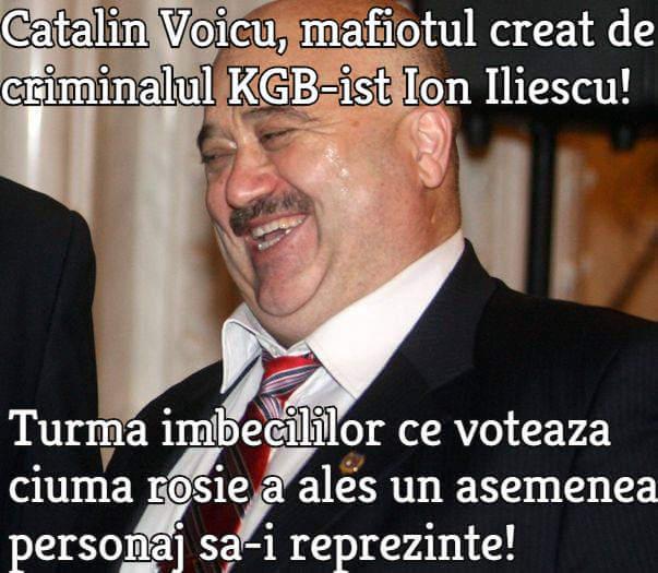 Catalin Voicu (PSD)