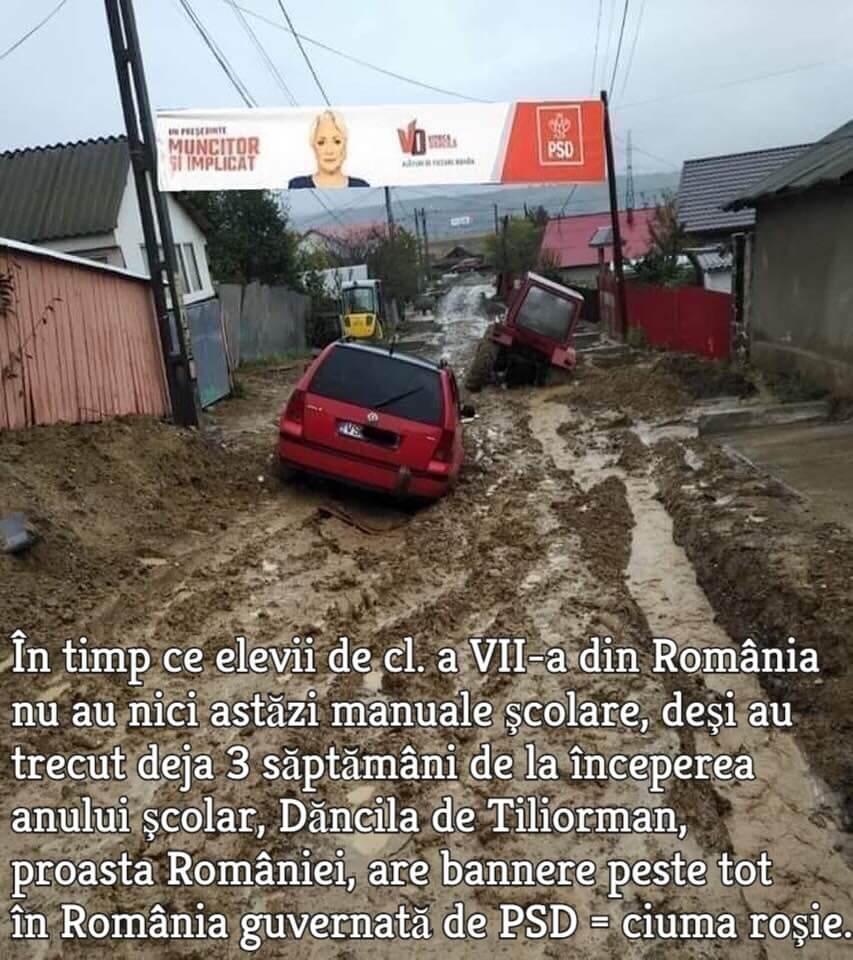Banner Viorica Dancila