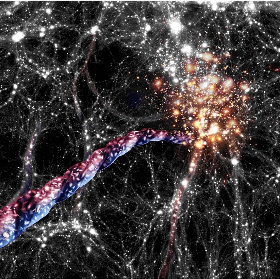 Filamente cosmice