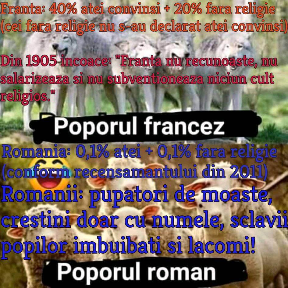 Francezi versus romani