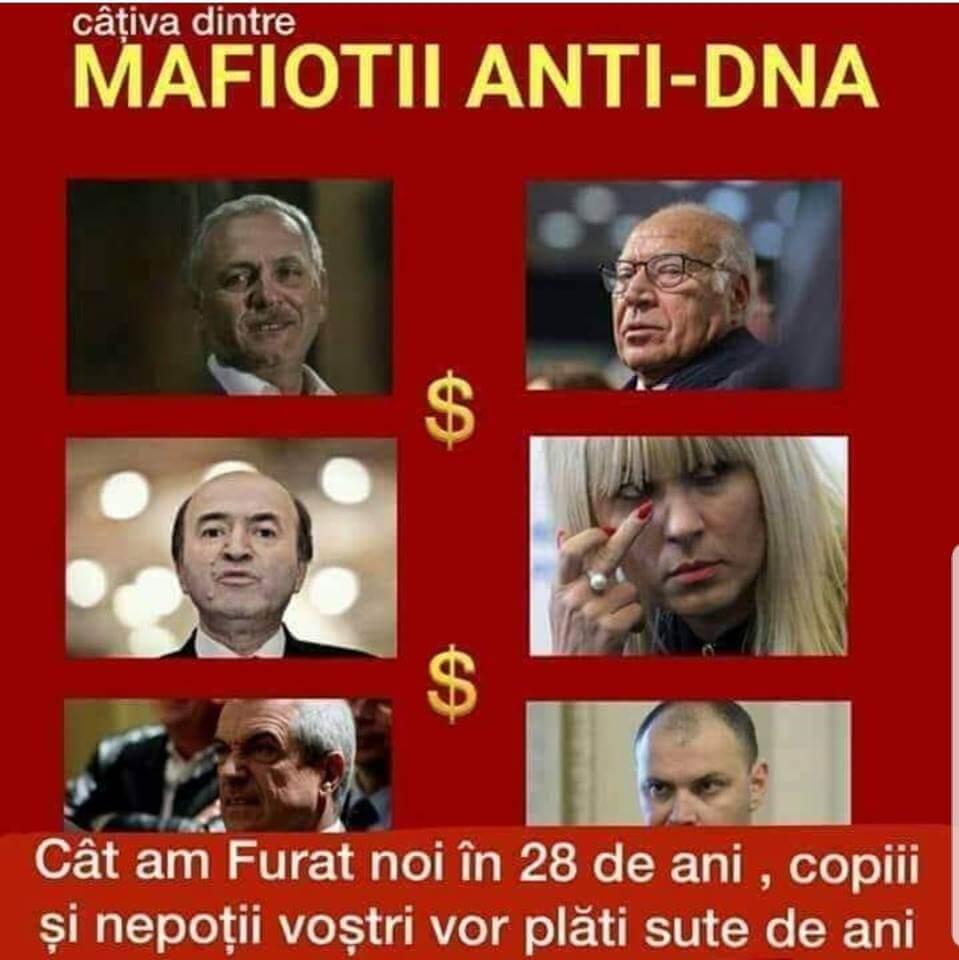 Mafiotii anti DNA