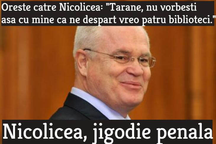 Nicolicea