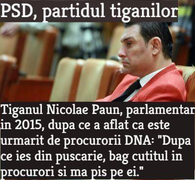 PSD - partidul tiganilor