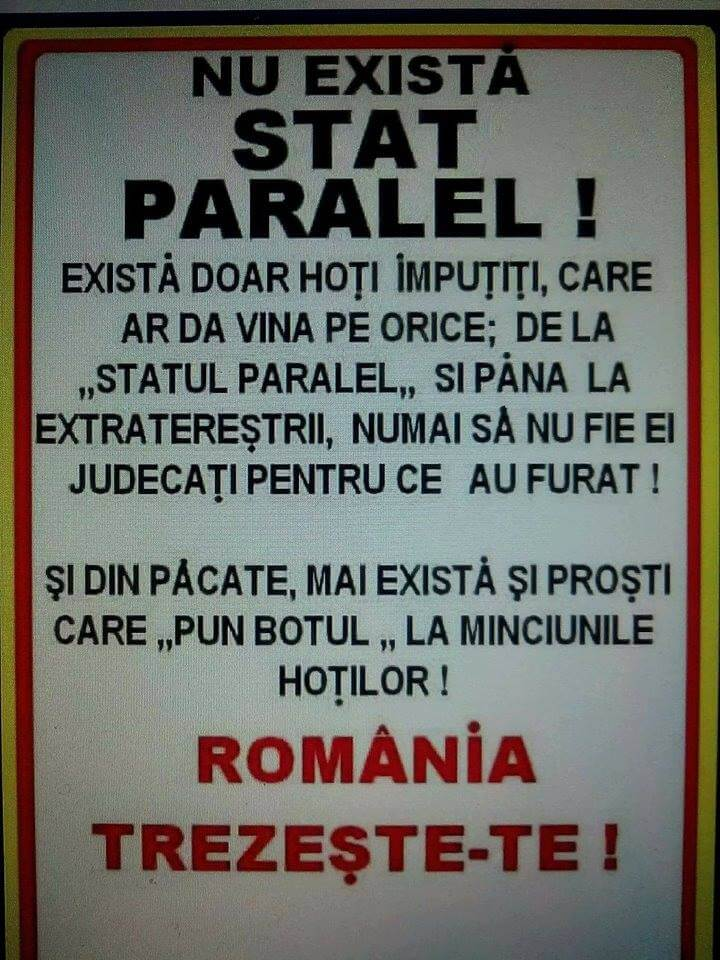 Statul paralel