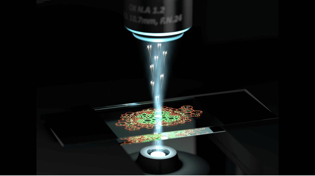 Microscop cuantic