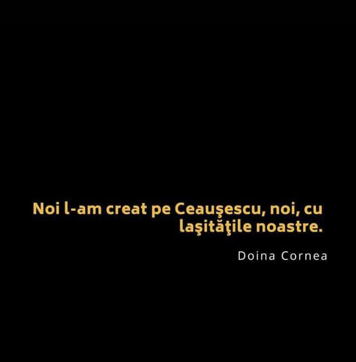 Citat Doina Cornea