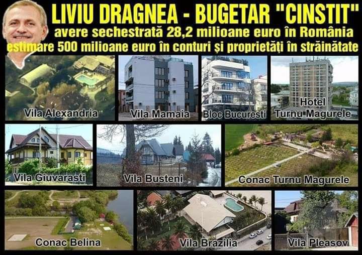 Liviu Dragnea, avere