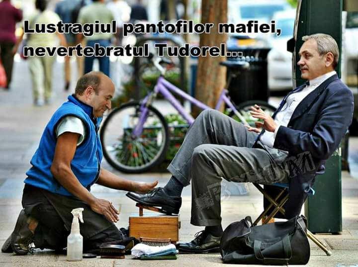 Tudorel Toader lustruind pantofii puscariasului Liviu Dragnea