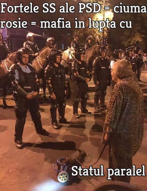 Jandarmii criminalului Liviu Dragnea